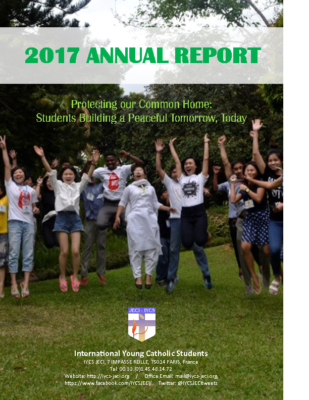 annual-report-2017-final-eng
